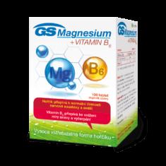 GS Magnesium s vitaminem B6, 100 tablet