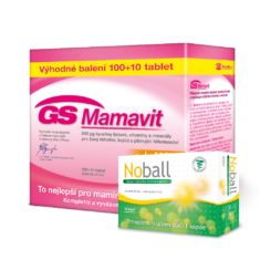 GS Mamavit, 100+10 tablet