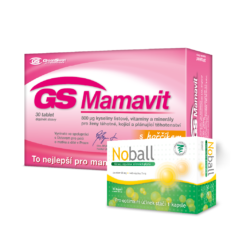 GS Mamavit 30 tablet